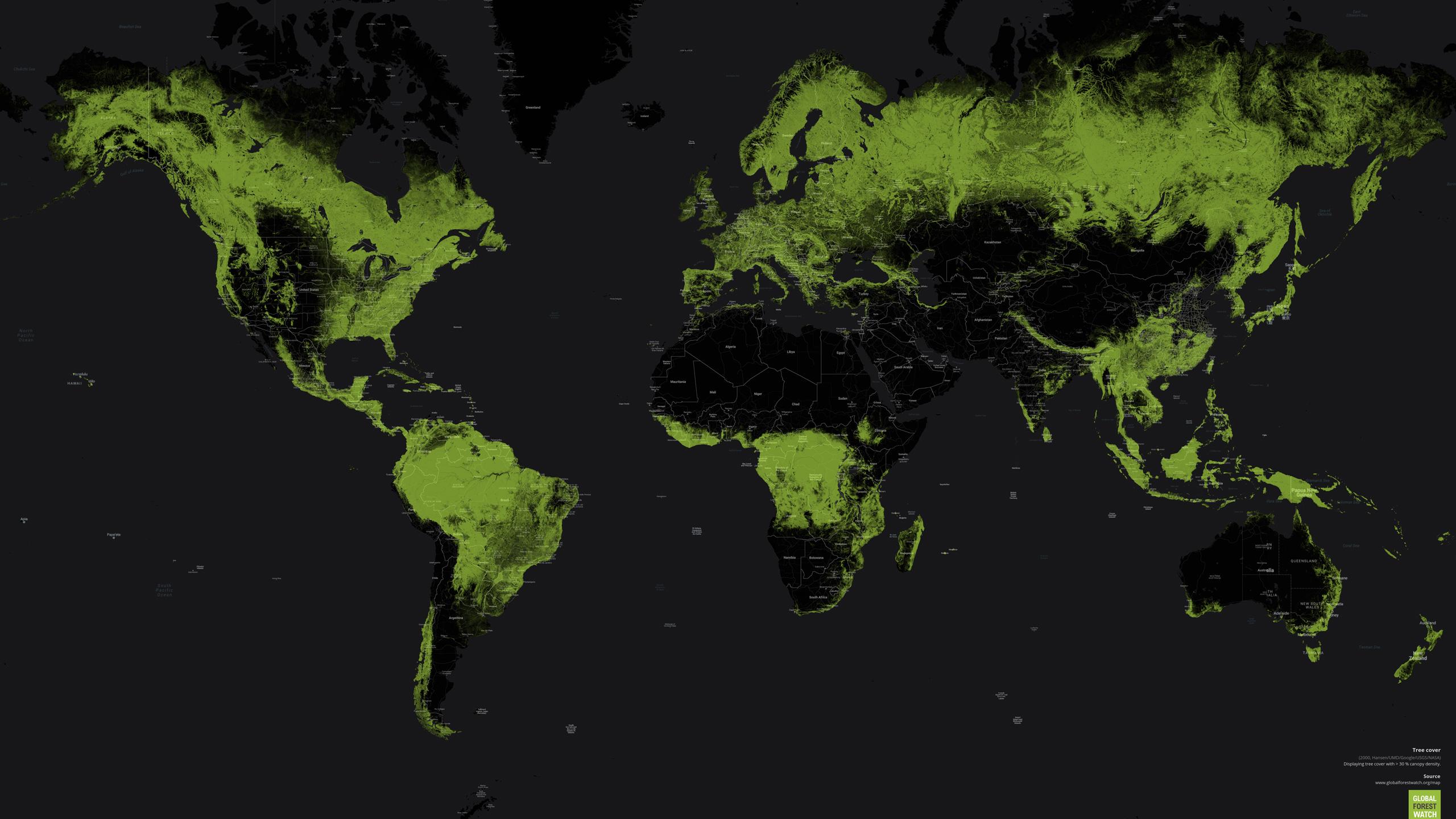 Påverkan på världens skogar